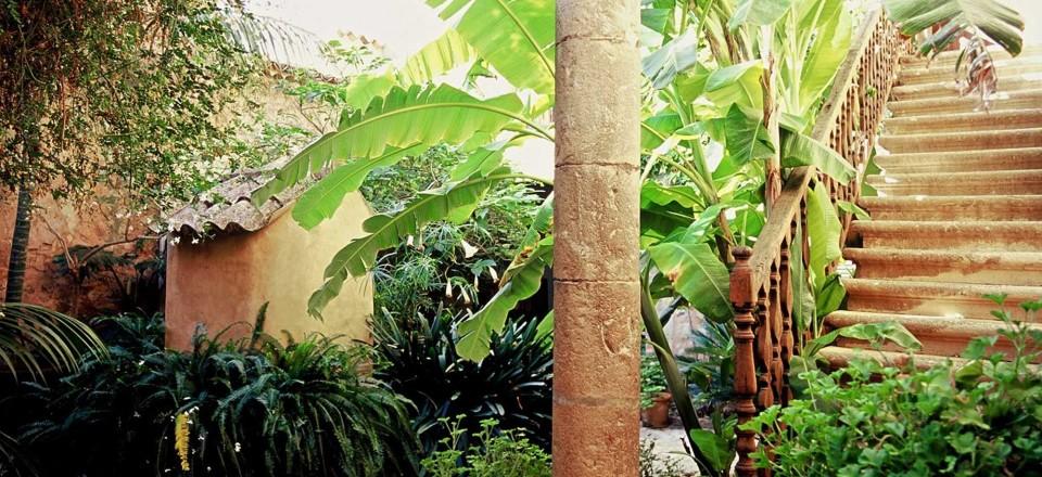 SonSalas – Courtyard